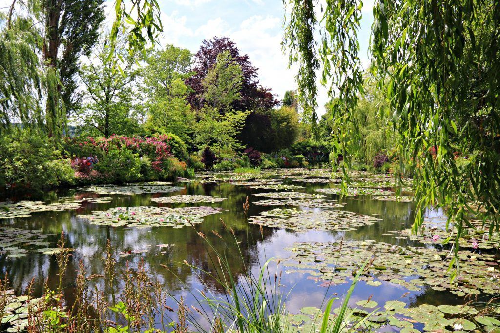 Cindy Bokma - Always5Star - Day Trip To Rouen and Giverny 5